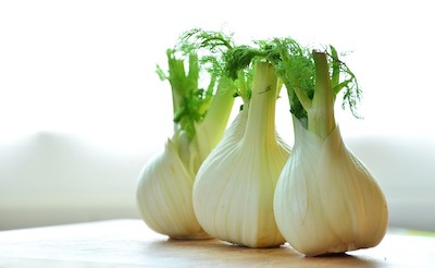 fennel-root