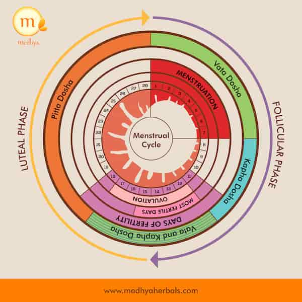 menstrual cycle-menstruation-ayurveda